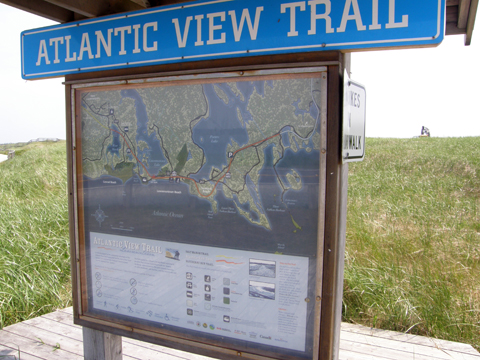 Lawrencetown Beach - Atlantic View Trail