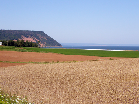Atlantic Geofest 2008 On Cape Blomidon