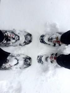 Walkin In A Winter WANDERland!