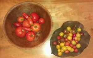 Today's Tomato Haul