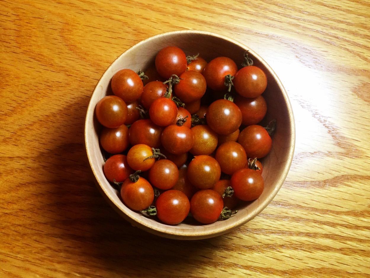 Chiapis Wild Tomatoes