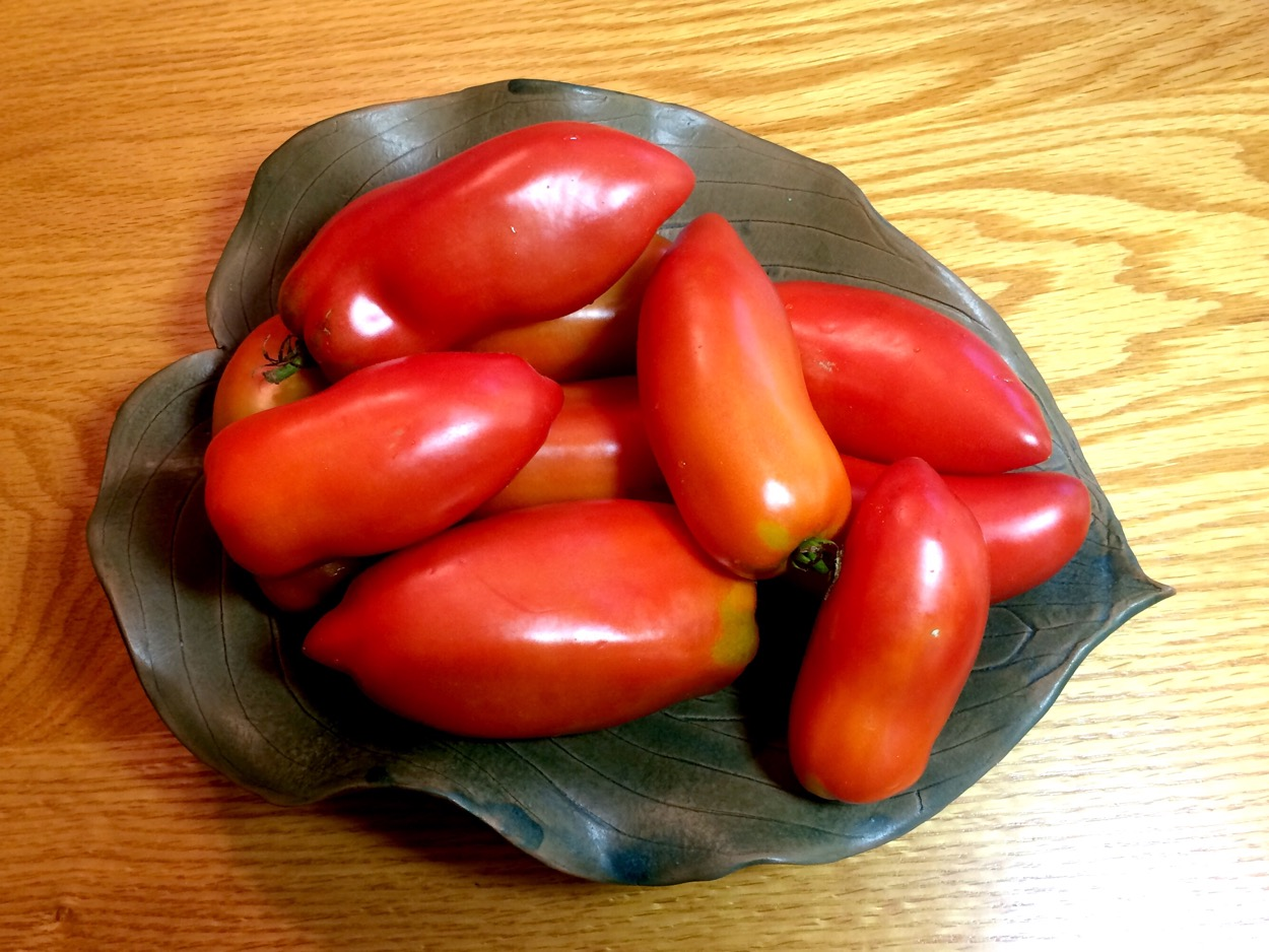 Andean Tomatoes